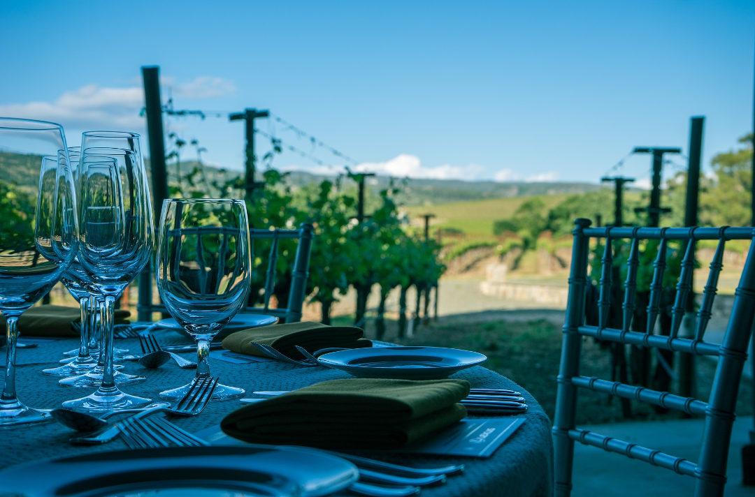 Weintourismus in Bulgarien